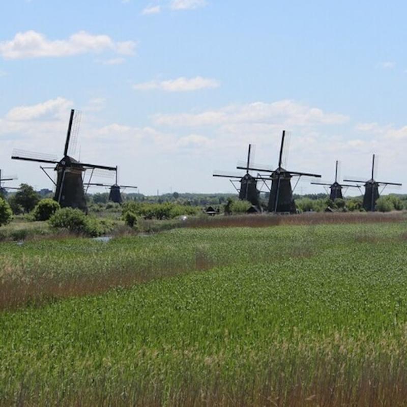 Excursie naar molens van Kinderdijk